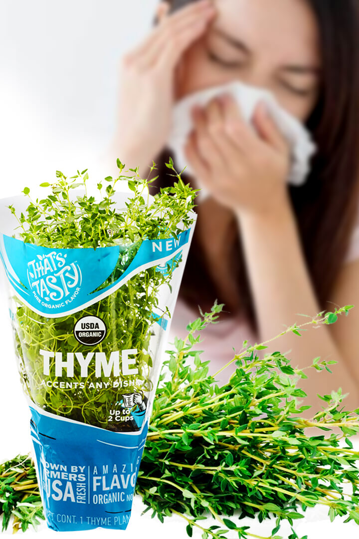fresh thyme for sinusitis