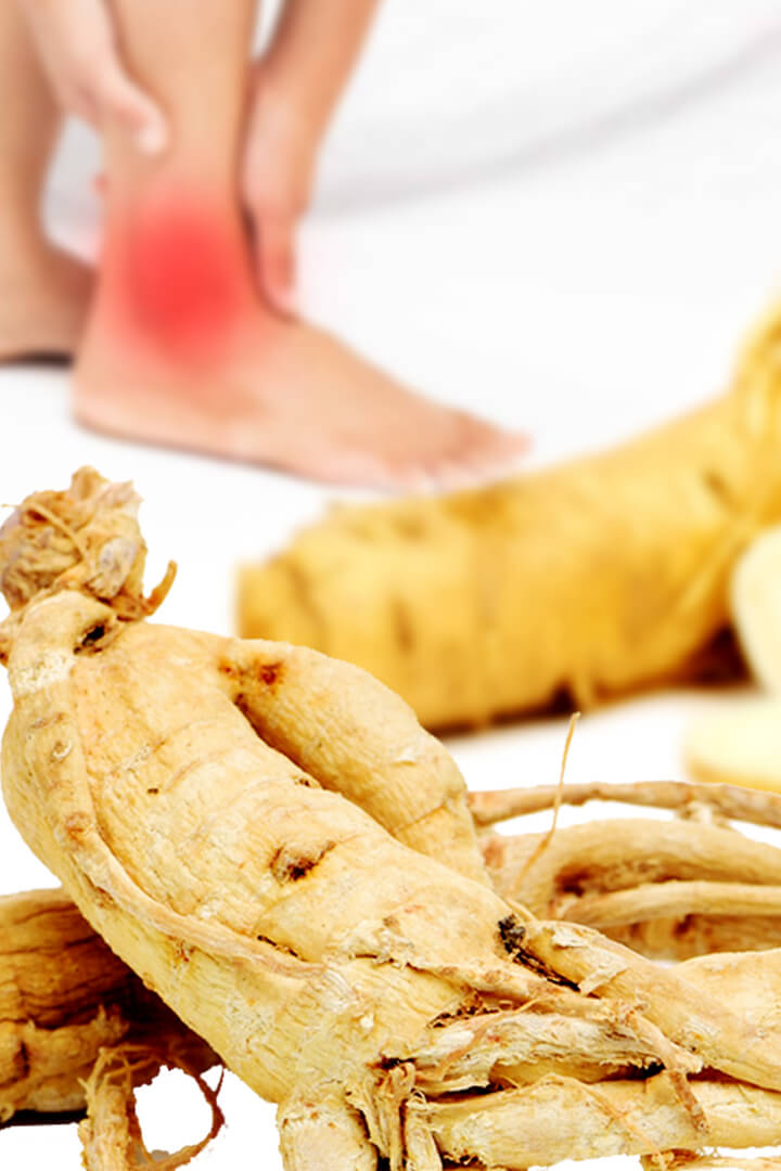 ginseng benefits for gout