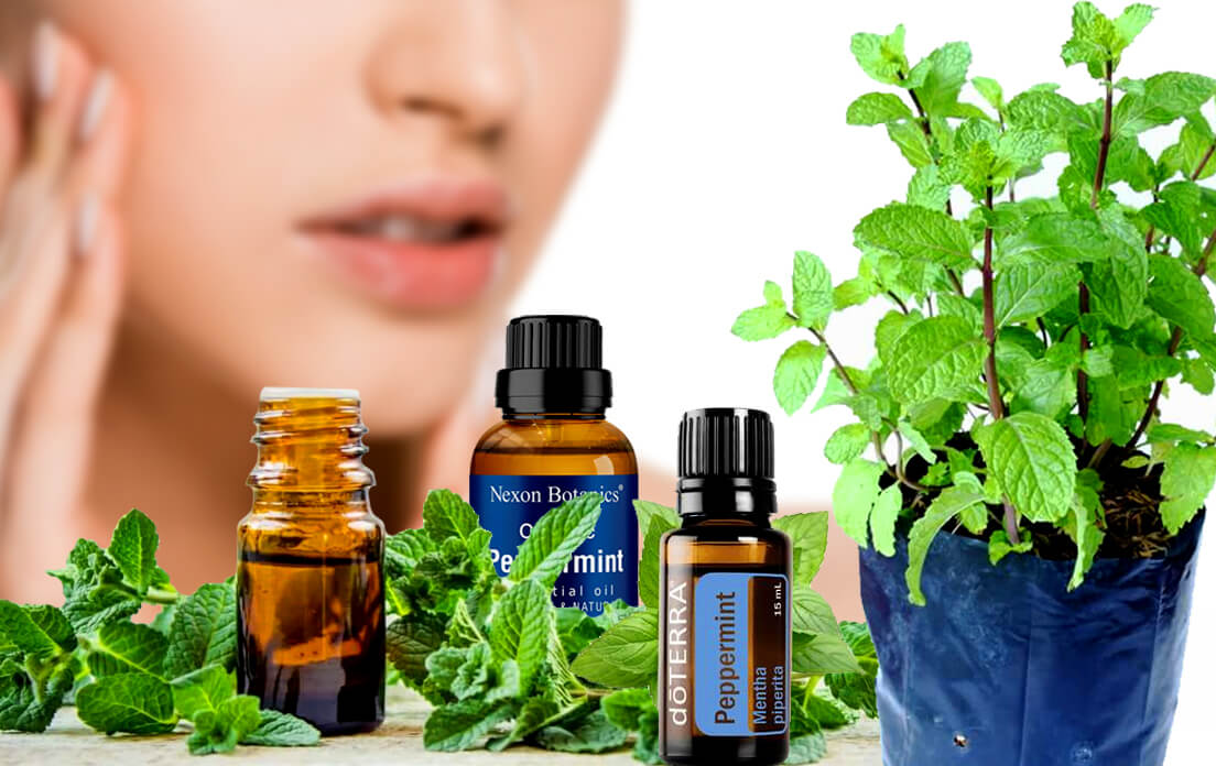 peppermint oil benefits for lips