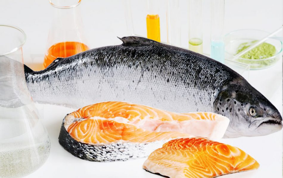 Wild Salmon Is Salmon That Is High In Mercury
