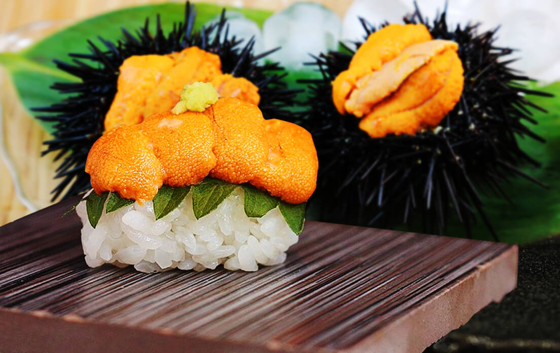 Sea Urchin Sushi: Besides the Many Benefits, is it Healthy?