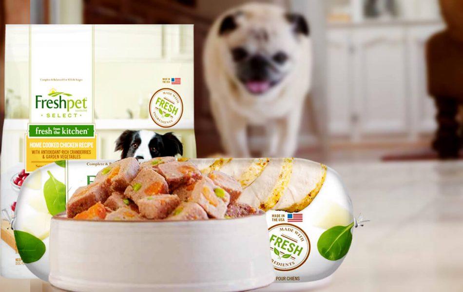 Fresh Pet Dog Food Refrigerated Recall best list