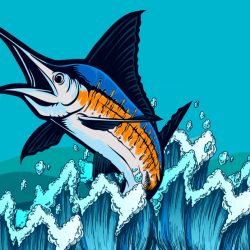 How Fast Can a Marlin Run 10 fastest fish in the sea