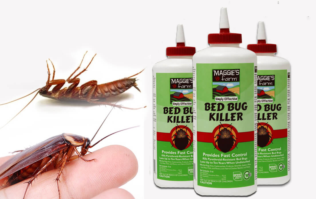 How To Get Rid Of Cockroaches Completely: Fast and Proven Effective