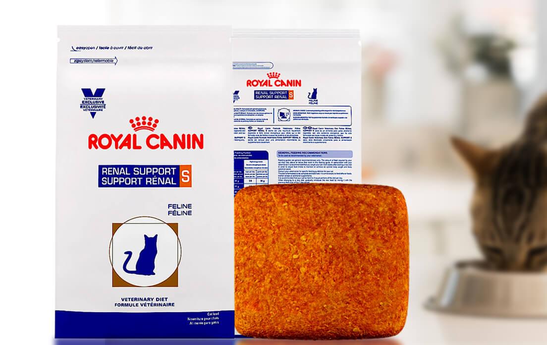Royal Canin Renal Cat Food Pets At Home