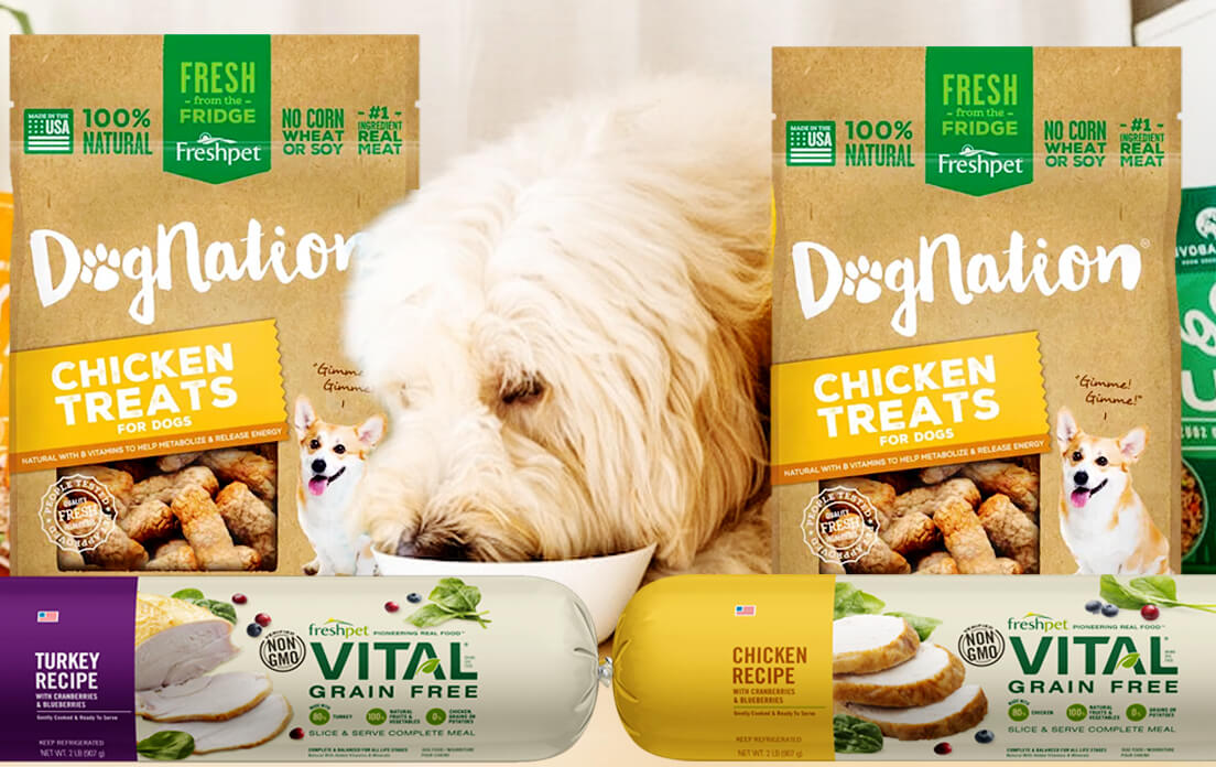 best dog foods ranked by vets